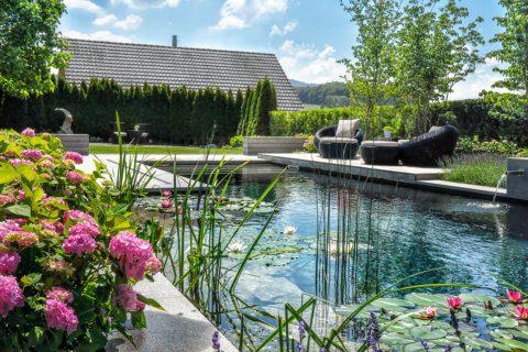 Wassergarten-mit-Schwimmteich-1