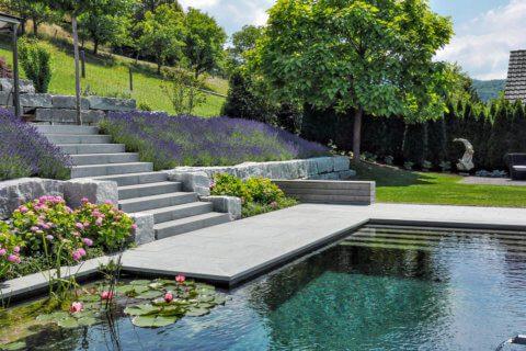Wassergarten-mit-Schwimmteich-4