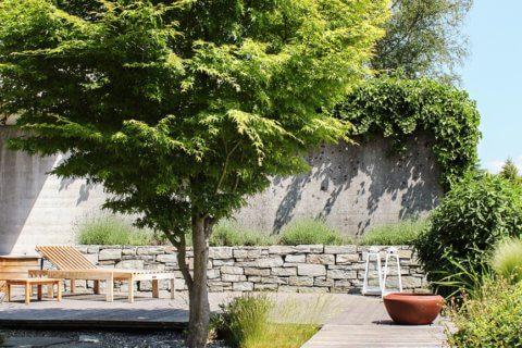 Privatgarten-mit-Holzdeck-9