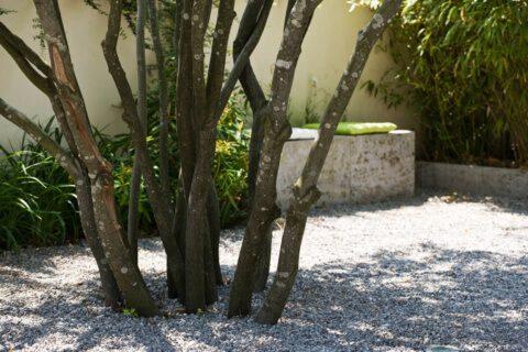 suedlaendischer-hinterhof-gartengestaltung-innenhof-brunnen
