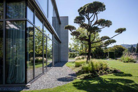 Pflanzplanung-Garten-Gartengestaltung-Solitär