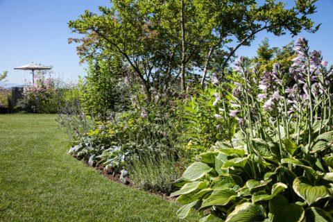Pflanzplanung-Pflanzkonzept-Gartengestaltung