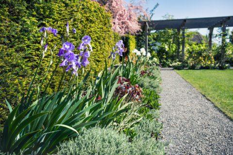 Gartengestaltung-Brunnen-2