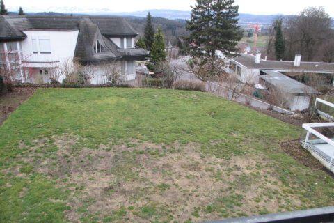Vorher 2-Gartengestaltung mit Brunnen