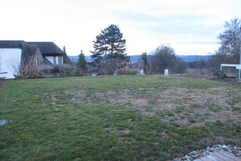 Vorher-Gartengestaltung mit Brunnen