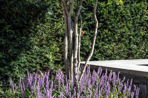 Wohnlicher-Garten-mit-Pool-4