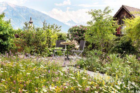 Naturnaher-Garten-1