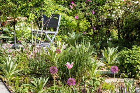 Familiengarten-mit-natuerlichem-Flair-7