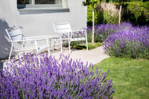 Stimmungsvoller-Privatgarten-3