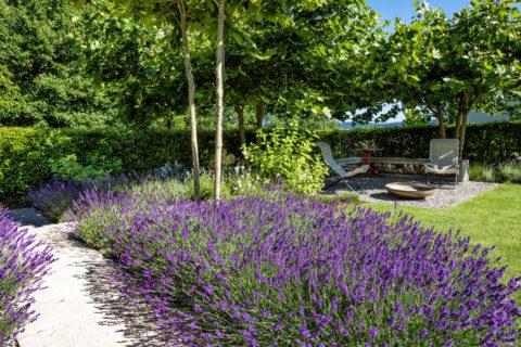 Stimmungsvoller-Privatgarten-4