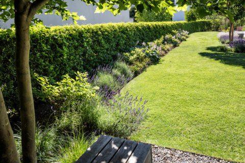 Stimmungsvoller-Privatgarten-7