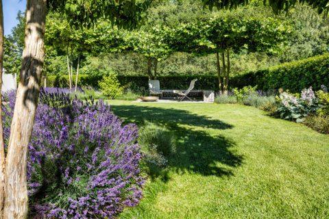 Stimmungsvoller-Privatgarten-8
