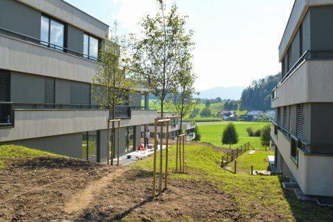 Plan Grundriss- Grossanlage Zentralschweiz-Überbauung-Fotos-vor-Ort