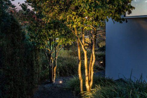 Gartenbeleuchtung bei Nacht