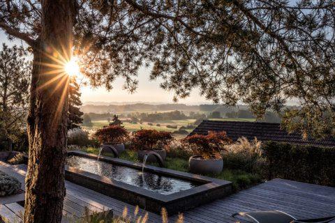 Titelbild-Baeume-wie-Skulpturen-PARCS-Gartengestaltung