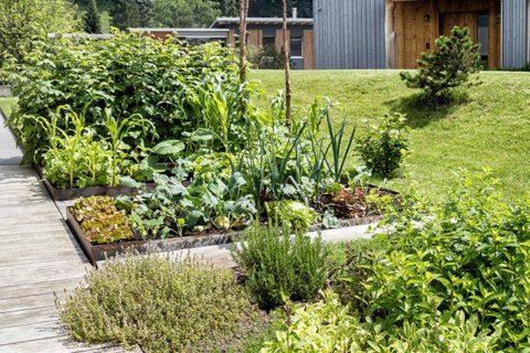 kräuterbeet-naschgarten-parcs-gartengestaltung-gartentrends-2021