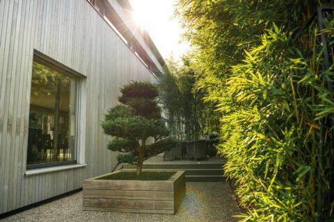 gartengestaltung-einfamilienhaus-mit-pavillon-6